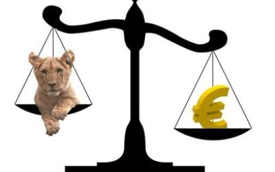 Tranzactii forex piata valutara