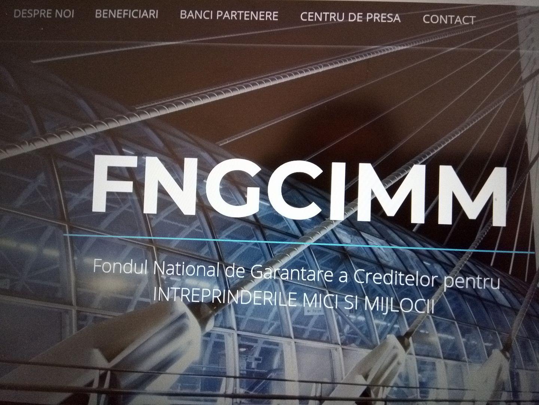FNGCIMM: Fondul are un nou site performant prin care clientul poate urmari evolutia dosarului sau. Fondurile Prima Casa se ridica la doar 2 miliarde de lei
