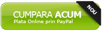 Top banci pe Internet Banking