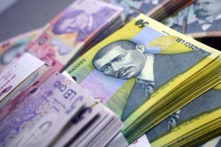 "Populatia a sustinut creditarea in lei iar firmele ""ingroapa"" creditele in valuta"