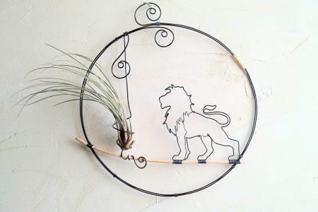 Leul se simte pisicuță în fața monedei euro. Cursul valutar, un nou record al ultimilor cinci ani