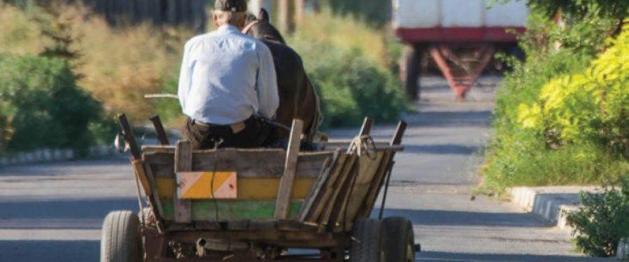 """Cum se împacă bankingul cu """"Viața la țară"""". Pensionar din Dăbuleni: """"Vreau să primesc și eu pensia la butoane!"""""""