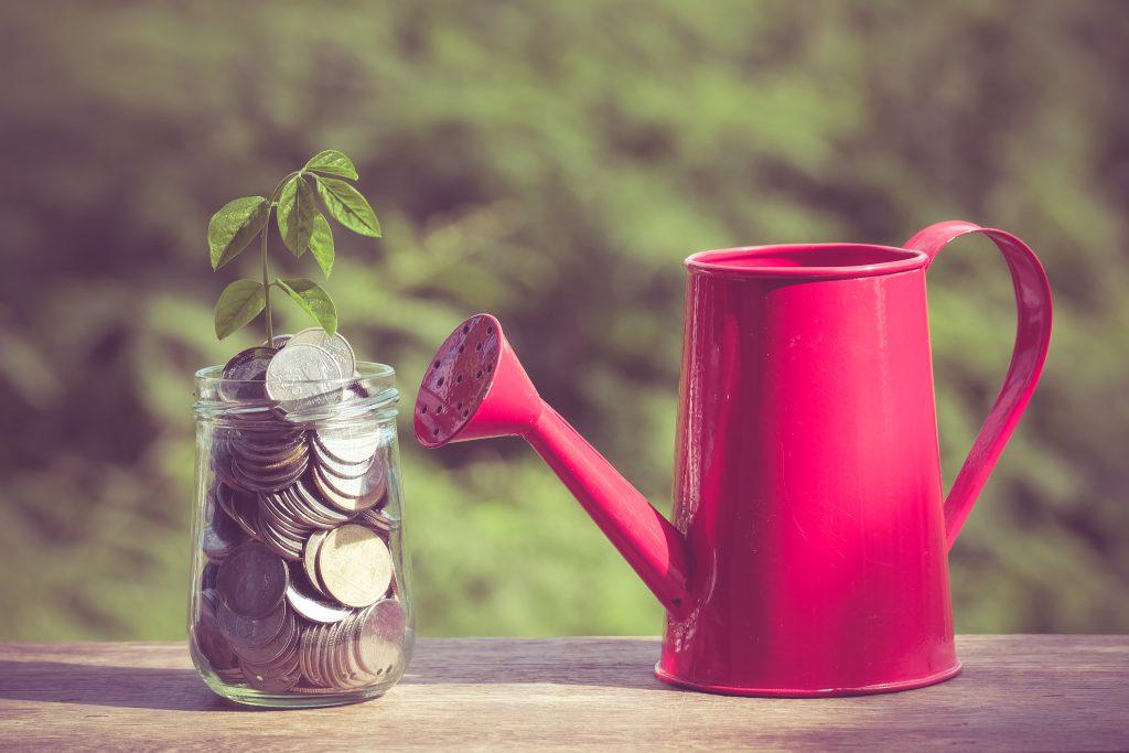 Banca Transilvania se alătură fondului Morphosis Capital Fund I pentru sprijinirea dezvoltării IMM-urilor românești