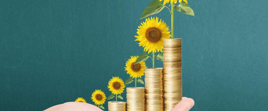 BCR, Raiffeisen Bank, ING Bank și UniCredit Bank au semnat o facilitate de credit sindicalizată în valoare de 324 milioane euro pentru finanțarea operațiunilor Ameropa în România