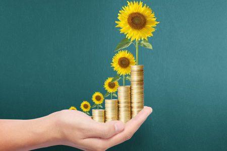 Fondul Naţional de Garantare a Creditelor pentru IMM demarează, în regim de urgenţă, Programul IMM Invest Romania