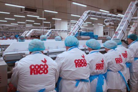 CEC Bank și EximBank finanțează expansiunea Grupului AAylex, producătorul puilor Cocorico. Credit de aproximativ 20 milioane de euro pentru preluarea producătorului de furaje și pui de o zi Banvit Foods